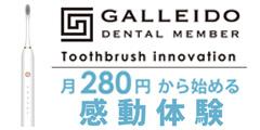 電動歯ブラシ GALLEIDO DENTAL MEMBER