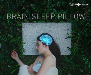 睡眠枕「ブレインスリープピロー」