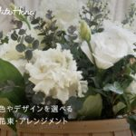 HitoHana(ひとはな)観葉植物通販