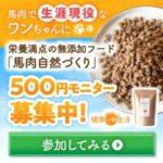 馬肉自然づくり(500円モニター)